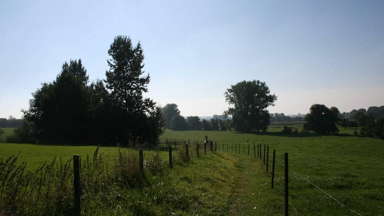 De groene landschappen van de Borinage